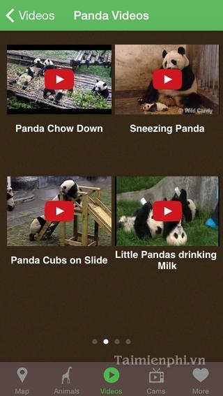 Tải Pocket Zoo cho iPhone